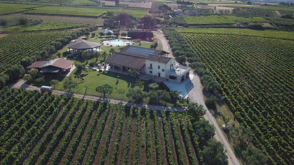Fontefico cantina abruzzo vino biologico naturale wine